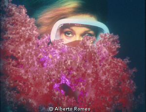 Red softcoral and a shediver by Alberto Romeo 